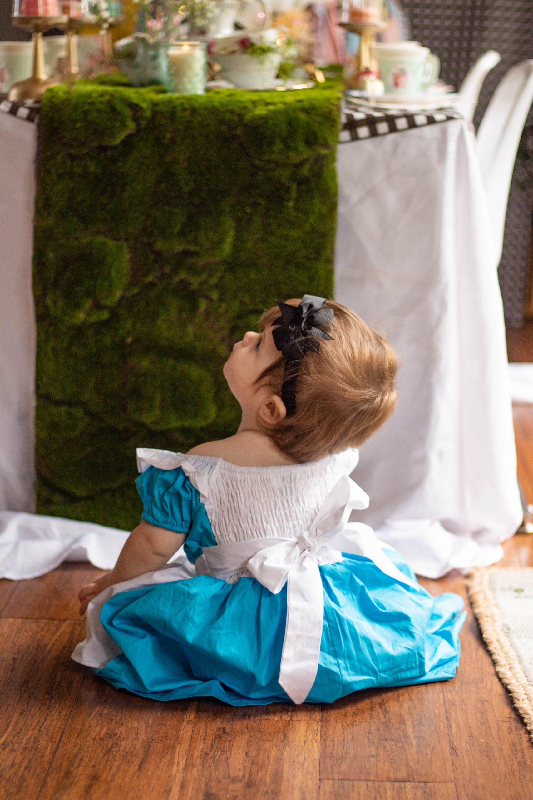 Baby girl Onederland First Birthday