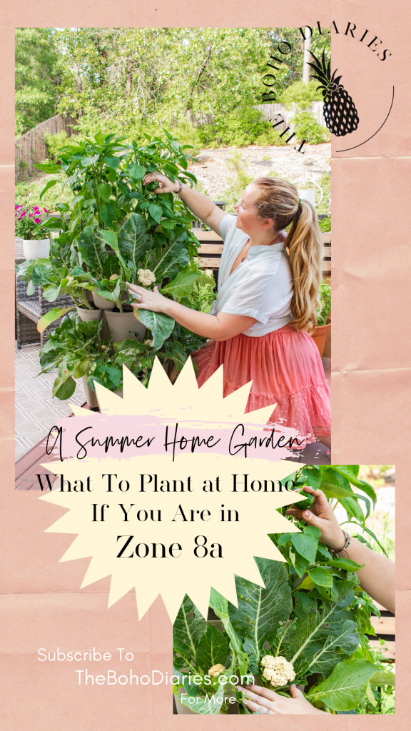 Summer Gardening at Home and What To Plant